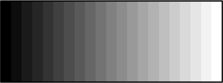 Spectrum Gray Scale